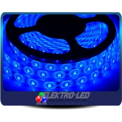 Blue LED STRIP 5630SMD